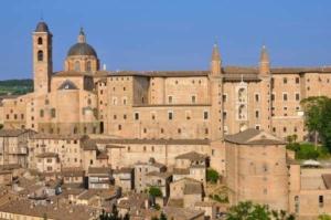 noleggio-macchine-edili-a-Pesaro-Urbino